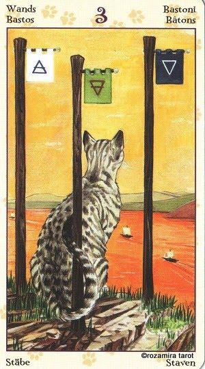 Tarot of Pagan Cats 313