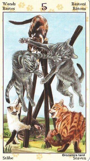 Tarot of Pagan Cats 513