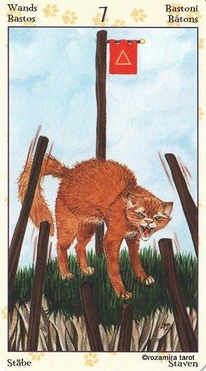 Tarot of Pagan Cats 713