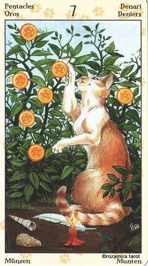 Tarot of Pagan Cats 715