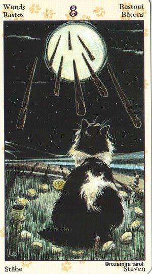 Tarot of Pagan Cats 813