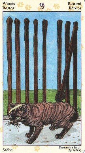 Tarot of Pagan Cats 912