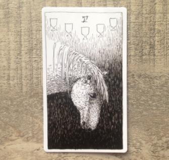 El Salvaje desconocido - Tarot - Copas Cinco_11