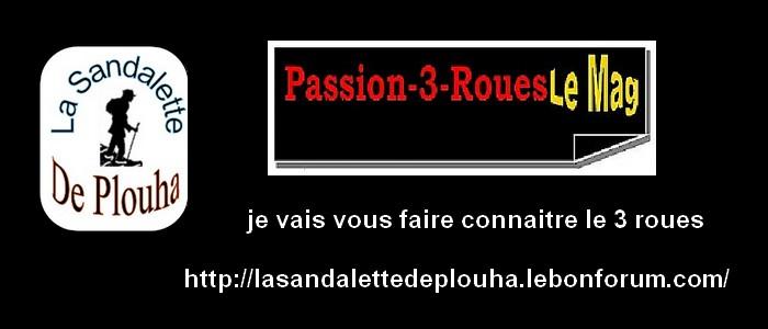 MAGAZINES SUR LE 3 ROUES  2011   PDF BLOQUE ? voir l'autre rubrique merci  3_roue10