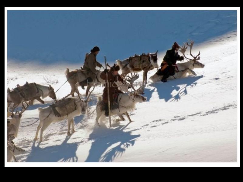 Un photographe a pris d'incroyables clichés d'une tribu mongole au mode de vie unique  Sans_271