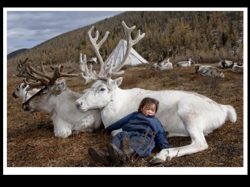 Un photographe a pris d'incroyables clichés d'une tribu mongole au mode de vie unique  Sans_275