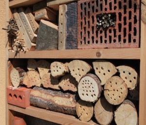 Comment fabriquer des hotels pour insectes et amis du jardinier Image25
