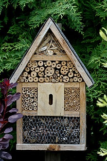 Comment fabriquer des hotels pour insectes et amis du jardinier Image26