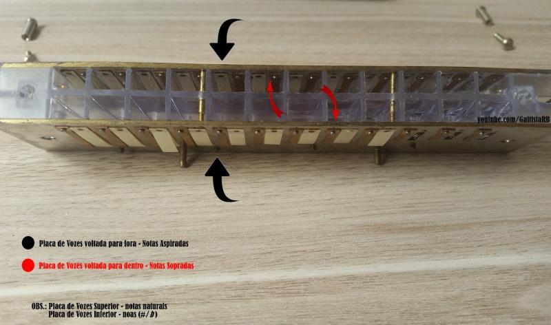 Aprenda a desmontar sua gaita Cromática e afinar...manutenção..basica Gaitis15
