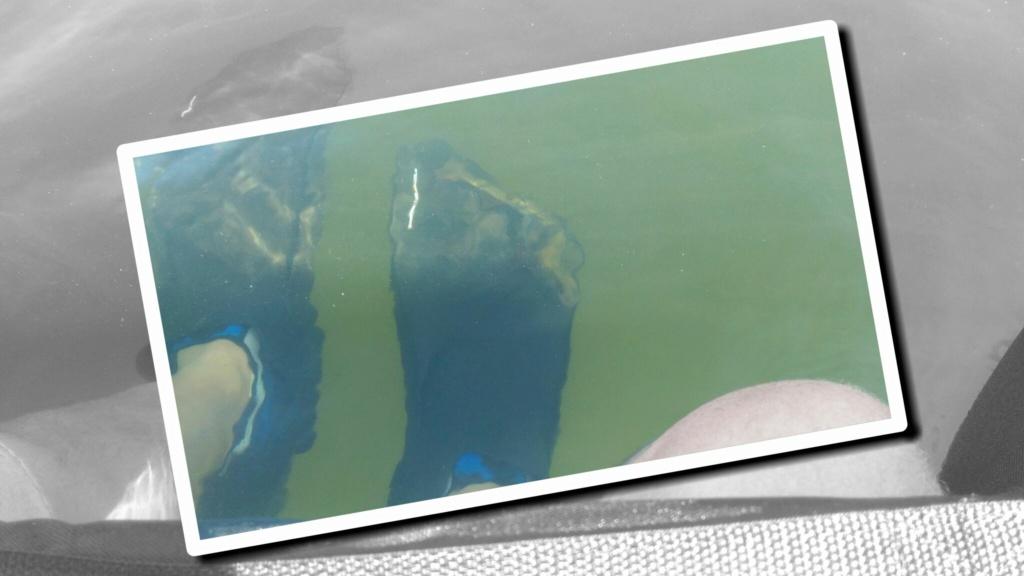 Lac de la raviège P_202026