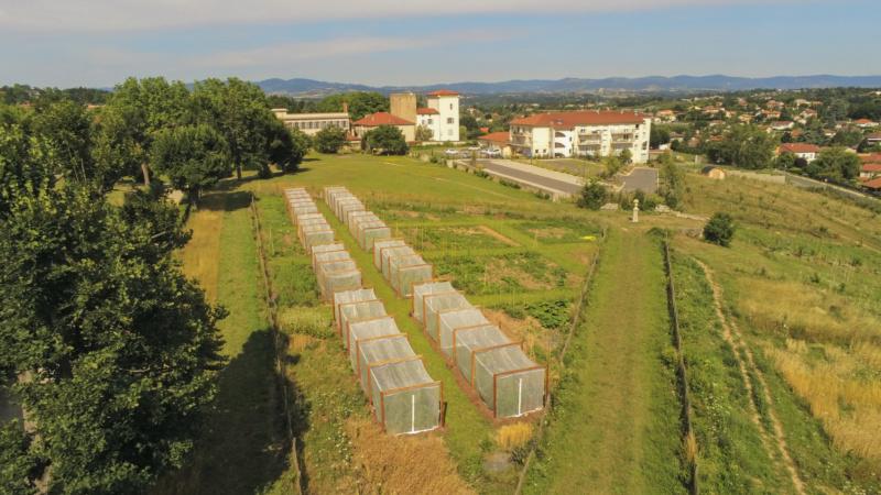 Lyon Métropole :  la commune de Charly inaugure un centre de recherche sur l'alimentation Lyon_m10