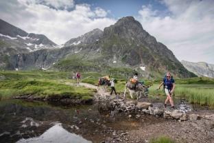 Région Auvergne Rhône-Alpes : et si cet été on redécouvrait la montagne ?! Randon10