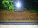 eau blanchâtre Img_2012