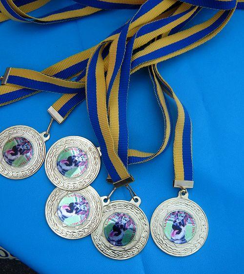 Монопородная  выставка  Вео в  Харькове  27.08.2011г. Rbhf_011