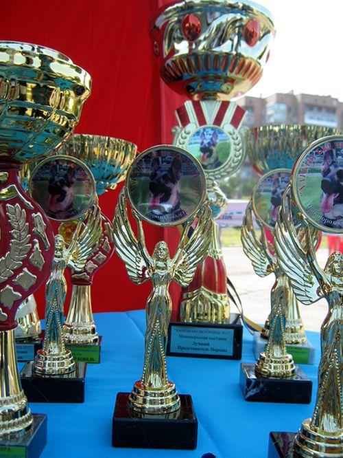 Монопородная  выставка  Вео в  Харькове  27.08.2011г. Rbhf_012