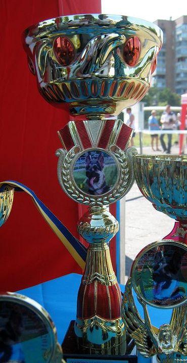Монопородная  выставка  Вео в  Харькове  27.08.2011г. Rbhf_014