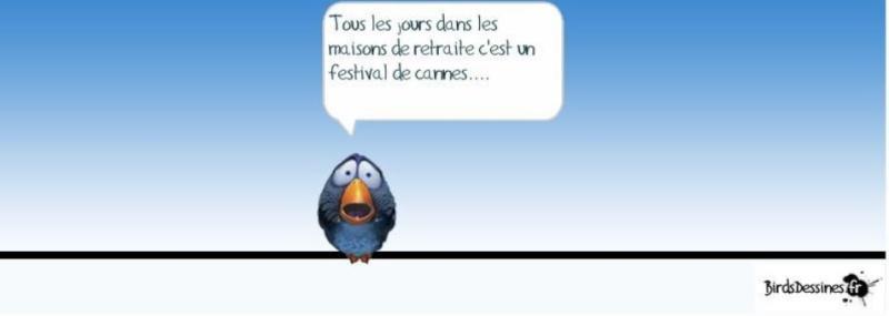 Les Birds Dessinés - Page 2 00000024