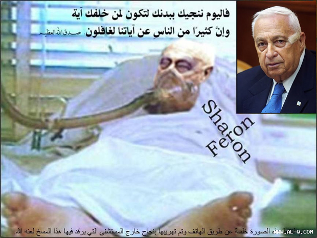 Ariel Sharon in a Coma..... Ariel-10