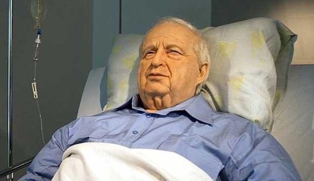 Ariel Sharon in a Coma..... Ariel10