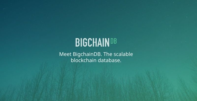 BigchainDB 1eleip10