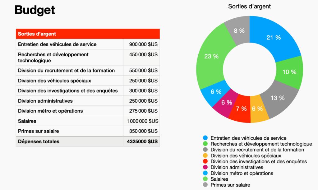 LSPDHQ - Bilan financier de l'année 2020 Captur10
