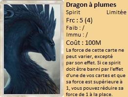 Liste des cartes Illusion Dragon13