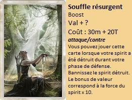 Liste des cartes Illusion Souffl13