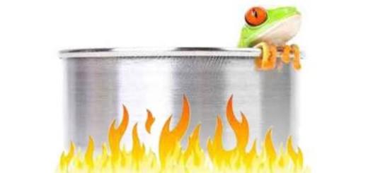 Souffrez-vous du syndrome de la grenouille ? Grenou10