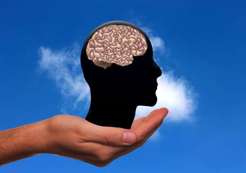 Une nouvelle recherche révèle que se plaindre nuit considérablement au fonctionnement du cerveau Hand-810