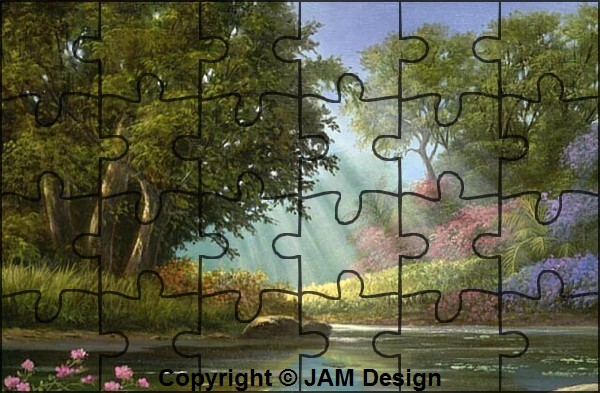 "N° 19 PFS "" Effet Puzzle "" Effet_10"