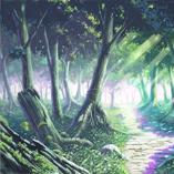 Bosque de Entrenamientos