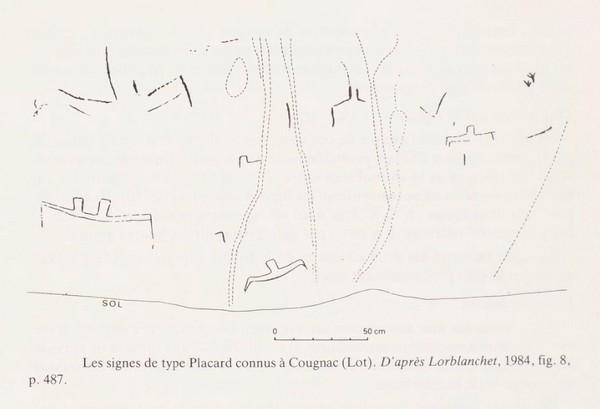 3.2.5. EXEMPLE DES SIGNES DITS « DU PLACARD ». Cougna14