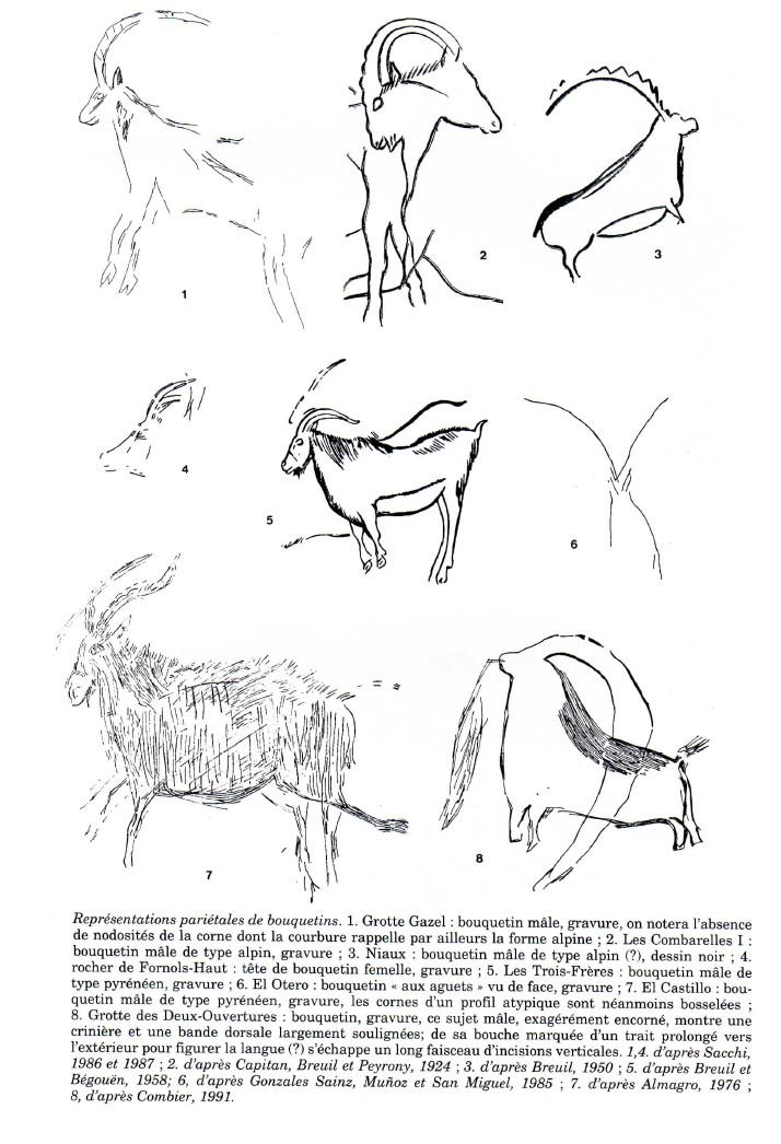 3.2.4. EXEMPLE DU BOUQUETIN DANS L'ART PARIÉTAL PALÉOLITHIQUE MÉDITERRANÉEN. Reprys10