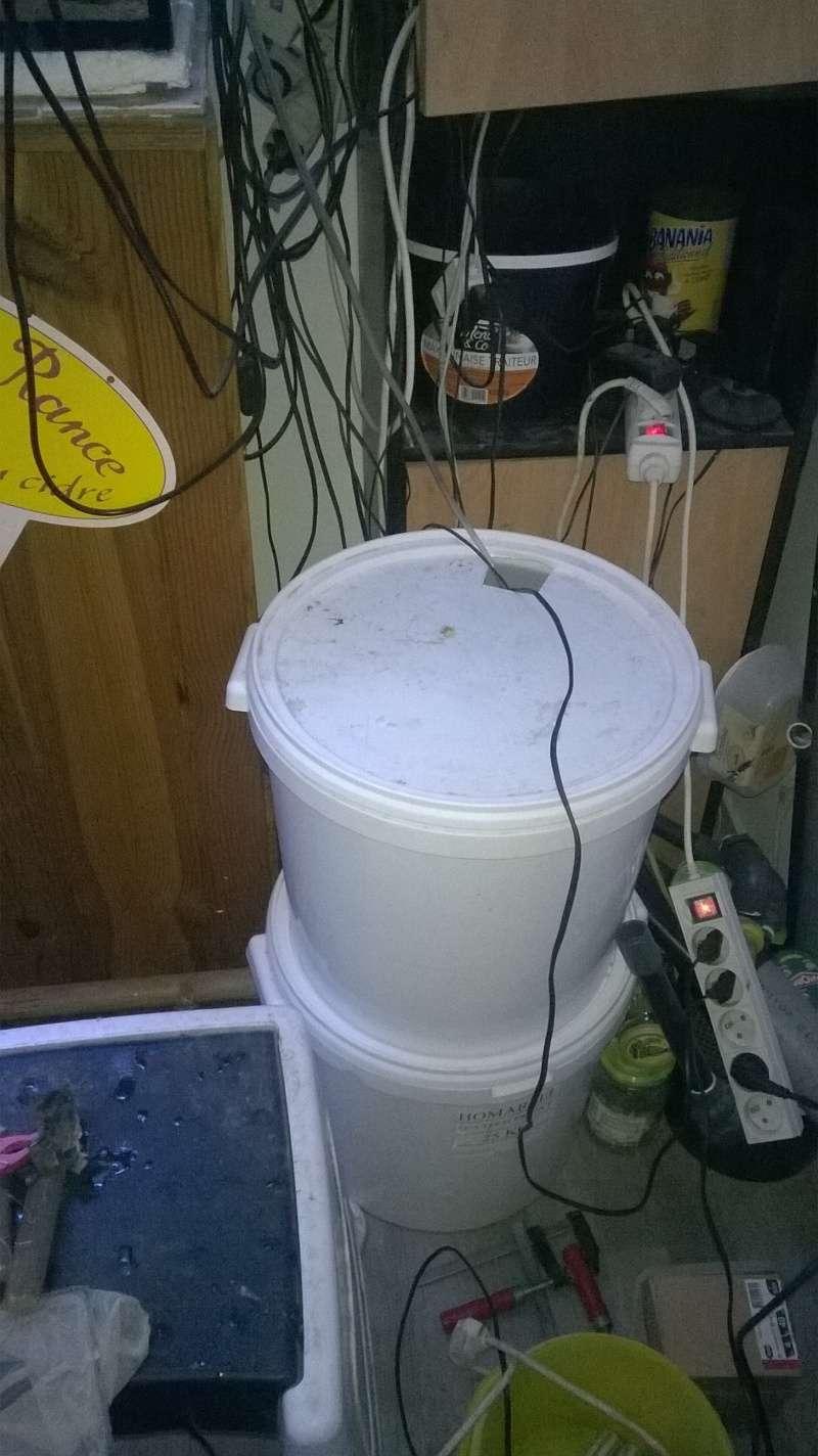 688 litres récifale  Wp_20125