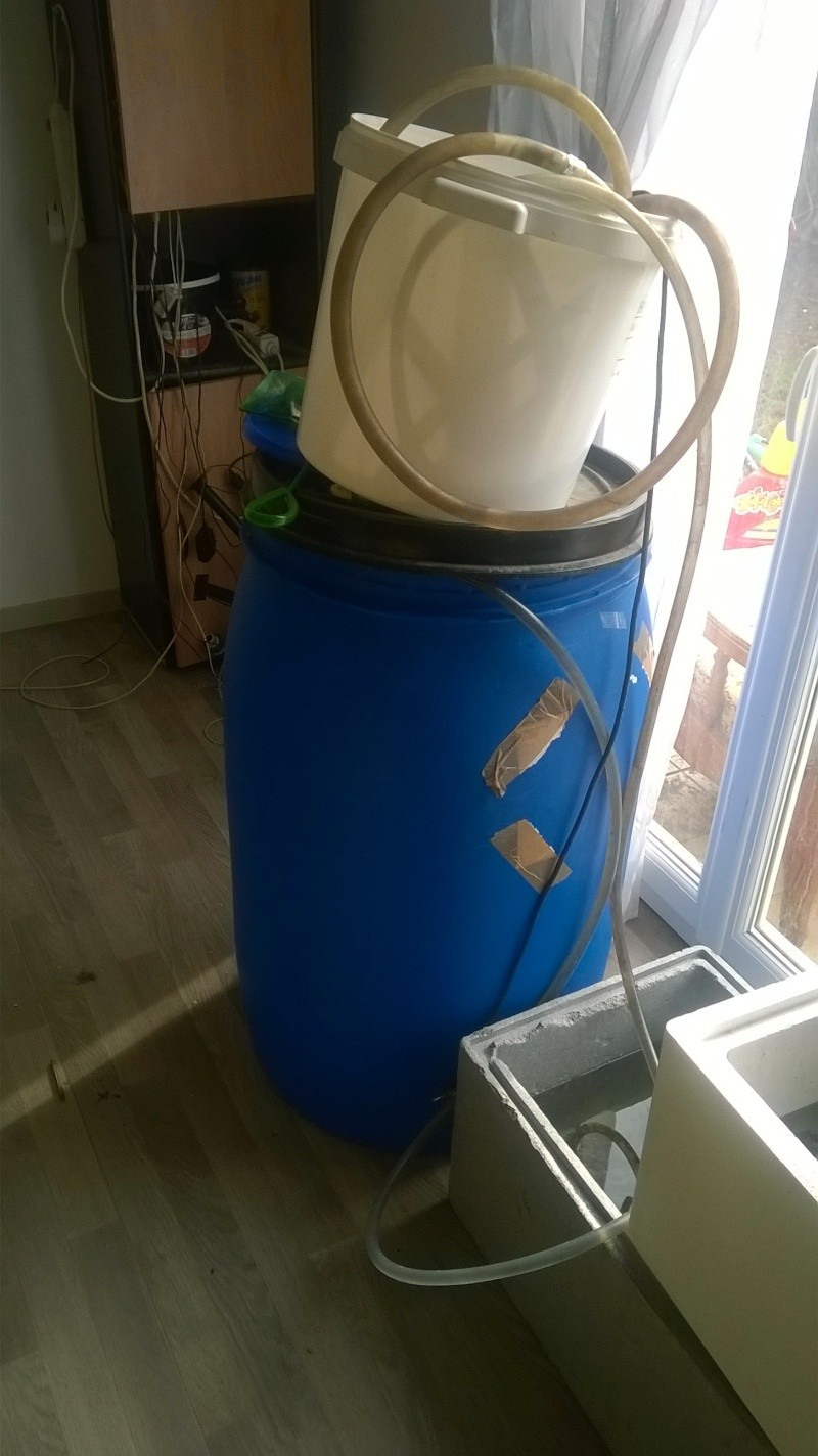 688 litres récifale  Wp_20129