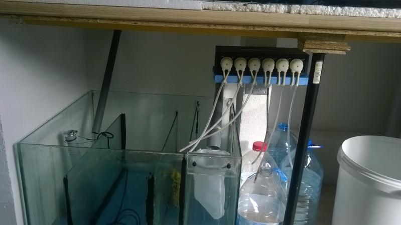 688 litres récifale  Wp_20151