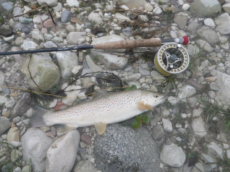 Trofei di pesca - Pagina 2 Imgp0010