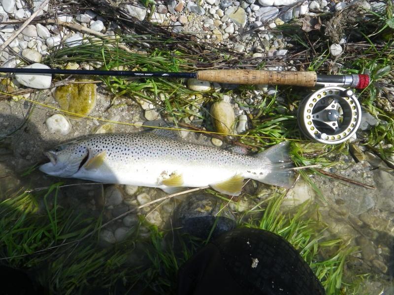 Trofei di pesca - Pagina 3 Imgp0020