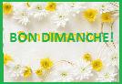 Présentation nouveau membre Bon_di15