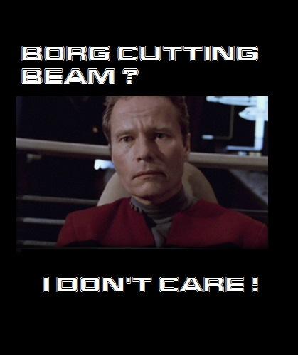 Erste Flotten Erhebung der Borg - Seite 2 Captai10