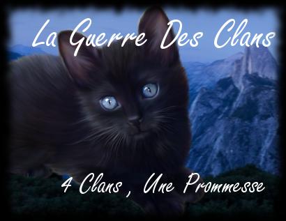 LaChatteBlanche  Laguer10