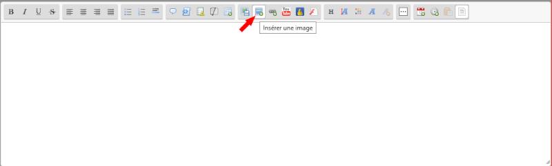 Tuto : Mettre des images dans ses messages Insere11