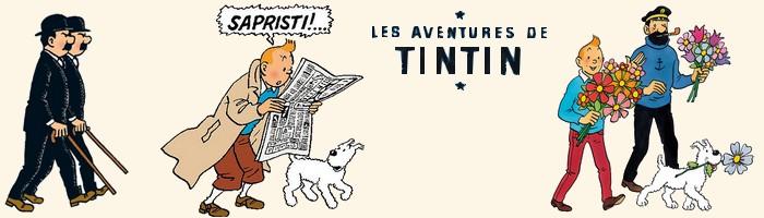 Les BD lues dans les années 80 et 90  Tintin12