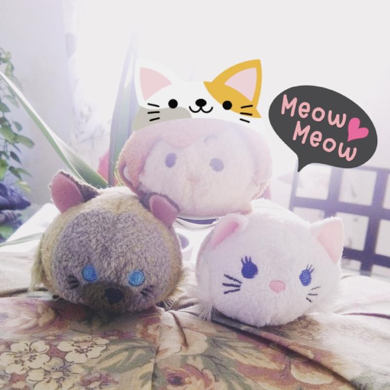 [Disney Store Japon] Cats Img_2010