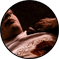 Intrigue n°01: Un meurtre soutenu par l'addiction I211
