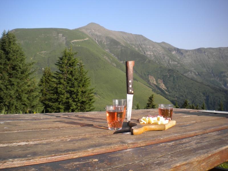 Location vacances vue sur la chaîne du Mont-blanc, 74170 Saint-Gervais-les-Bains (Haute-Savoie) 12310