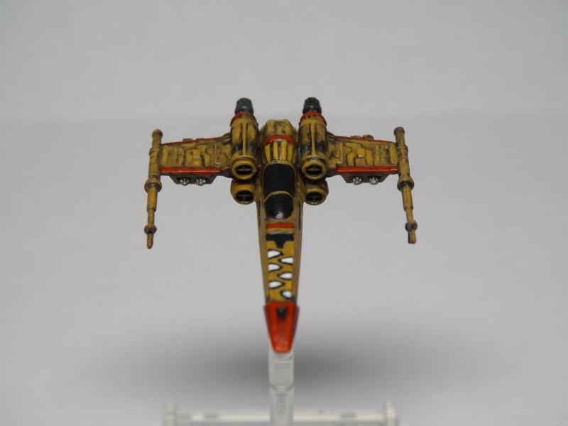 Cachorro de Nashtah (X Wing) Dsc00311