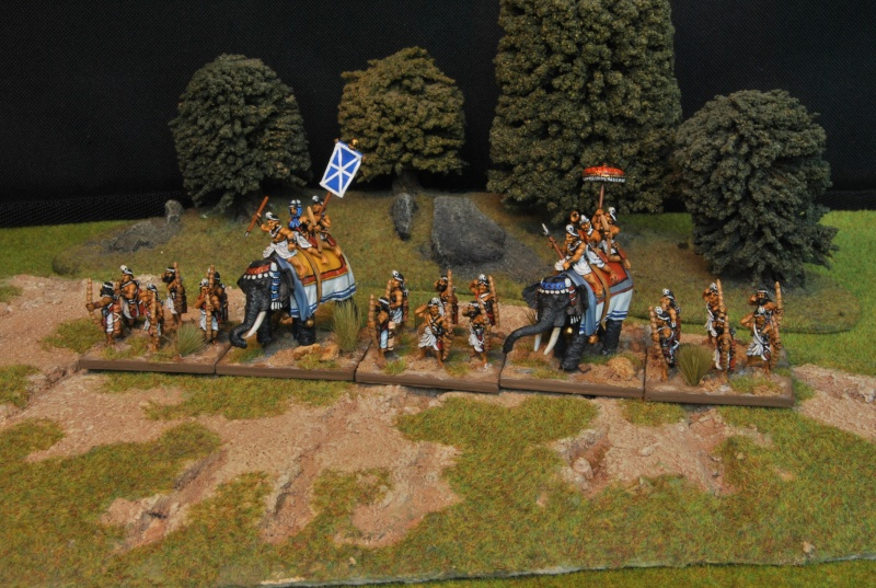 Mes armées chap. 1: Alexandre le Grand Dsc_5016