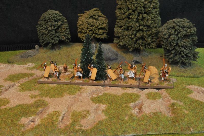 Mes armées chap. 1: Alexandre le Grand Dsc_5018