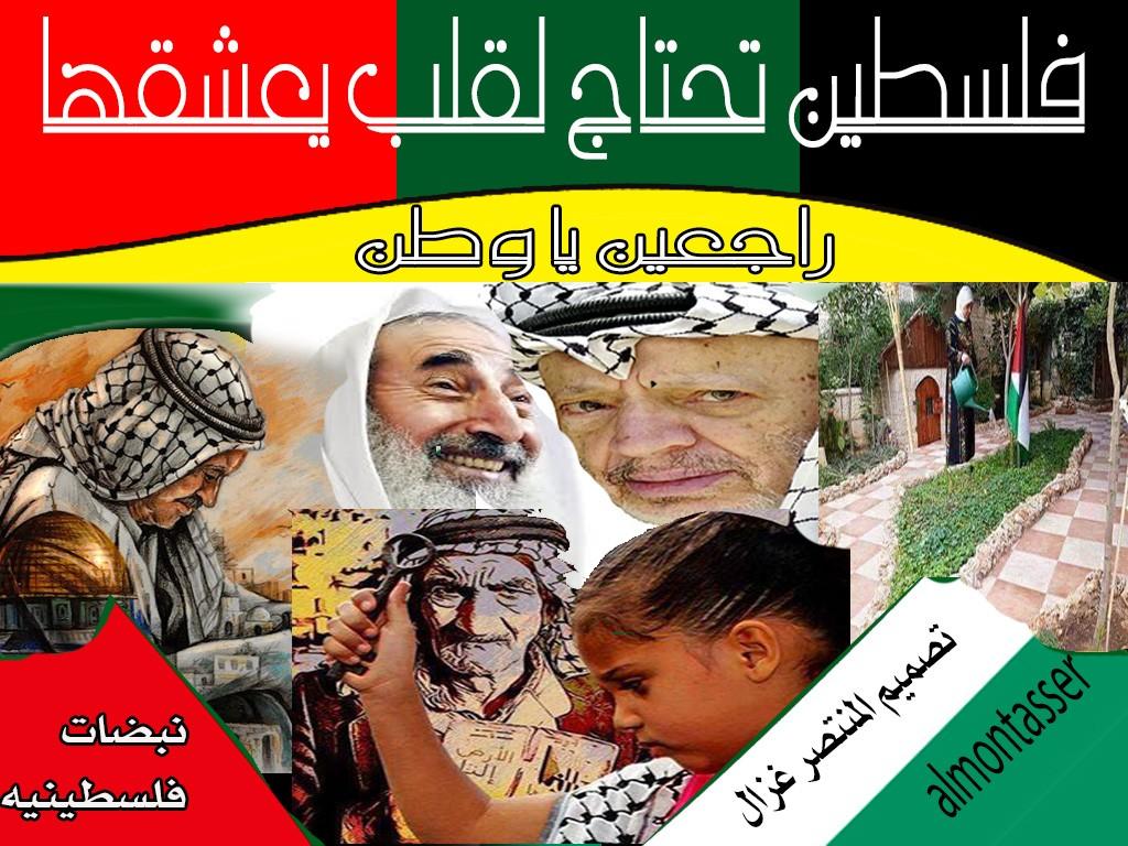 نبضات فلسطينيه